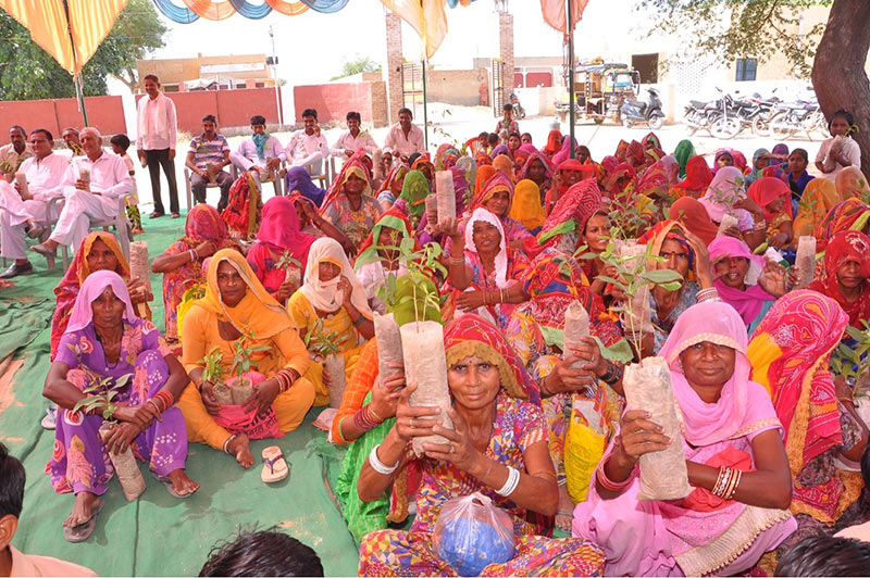 Women with saplings in Familial Forestry Festival, Sri Ganganagar, Bikaner