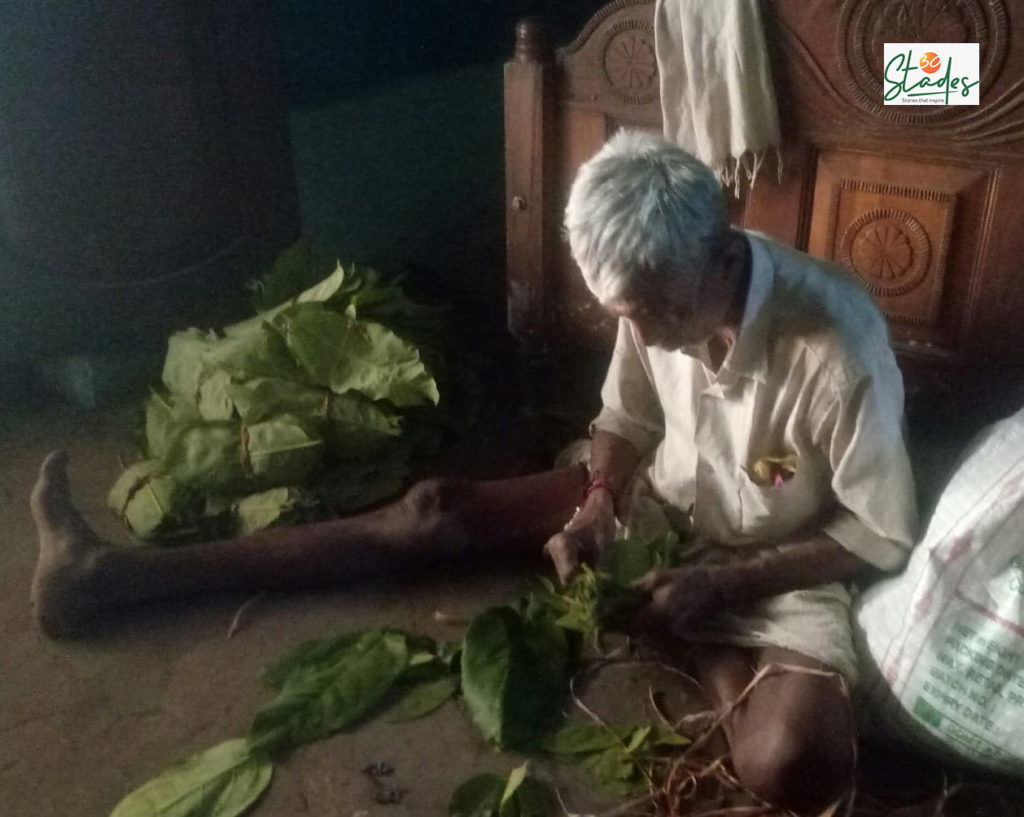 Tendu leaves cushion tribals from economic deprivation during COVID-19, bidi, poor man's cigarette, 30stades, tribal population, sustainable living, india, mp, odisha, chhatisgarh, jharkhand