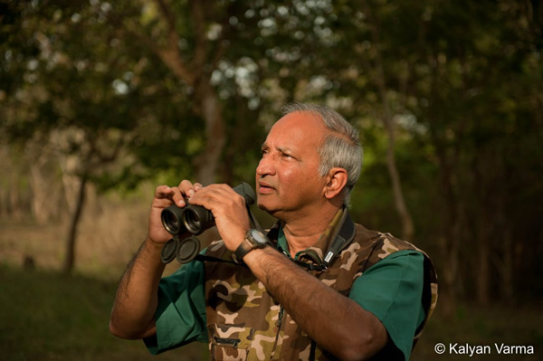 Reverse migration in COVID-19 may increase tiger poaching: Padma Shri tiger expert Dr  Kota Ullas Karanth,  Director and Managing Trustee of the Centre for Wildlife Studies. Project Tiger, census, ranthambore national park, Nagarhole park