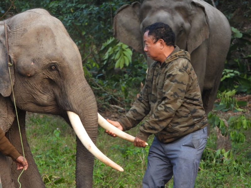 Tana Tapi: Forest officer who transformed poachers to protectors at Arunachal's Pakke Tiger Reserve elephant pangolin poaching arunachal pradesh hornbills tribals east Kameng district nyishi