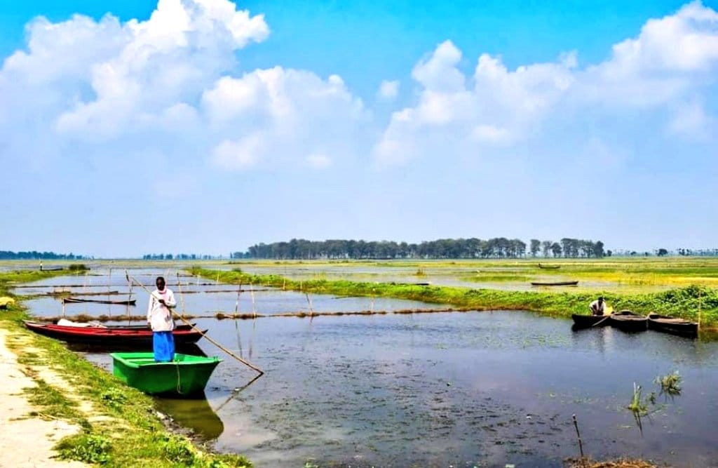 Many fishermen have left the area due to dwindling fish catch and the shrinking size of Kanwar Lake.