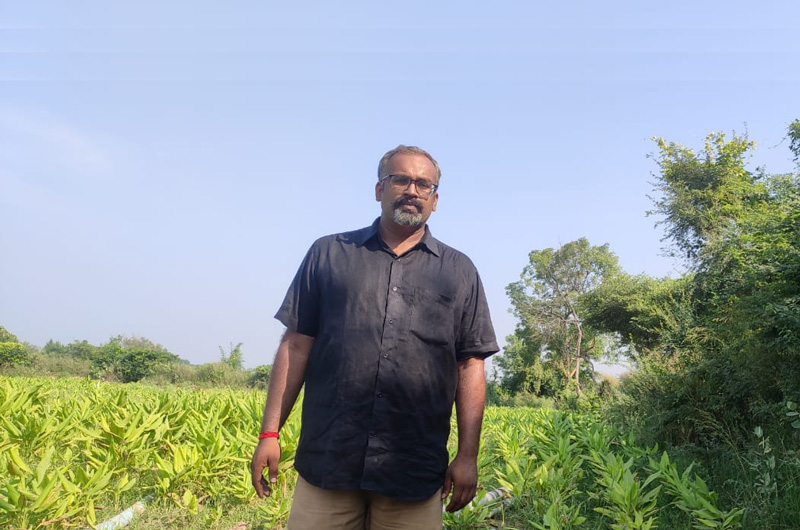 Chintan Shah: Gujarat's MBA farmer who turned infertile land into organic farm of turmeric, ginger & wheat 30 stades