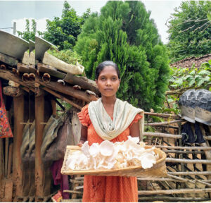 How mushroom farming is increasing income for women in Jharkhand 30 stades oyster cultivation