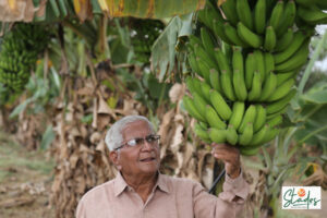 Jayant Barve: Maharashtra's organic farmer who became manure millionaire natural farming herbal pesticides 30 stades