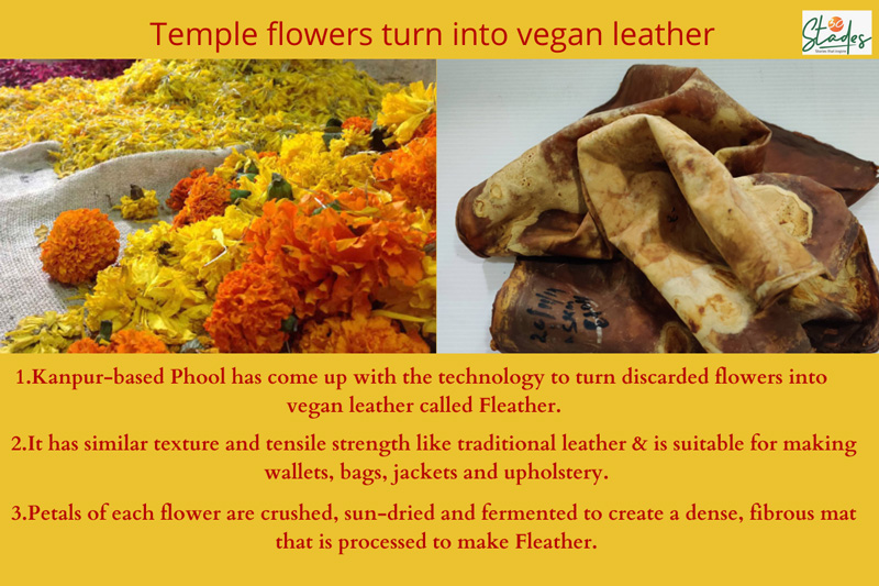 Temple flowers turn into fleather.