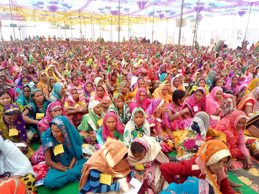 Over 55,000 women in Dungarpur are members of 2500 self-help groups and doing organic farming, dairy and animal husbandry.  Pic: PEDO