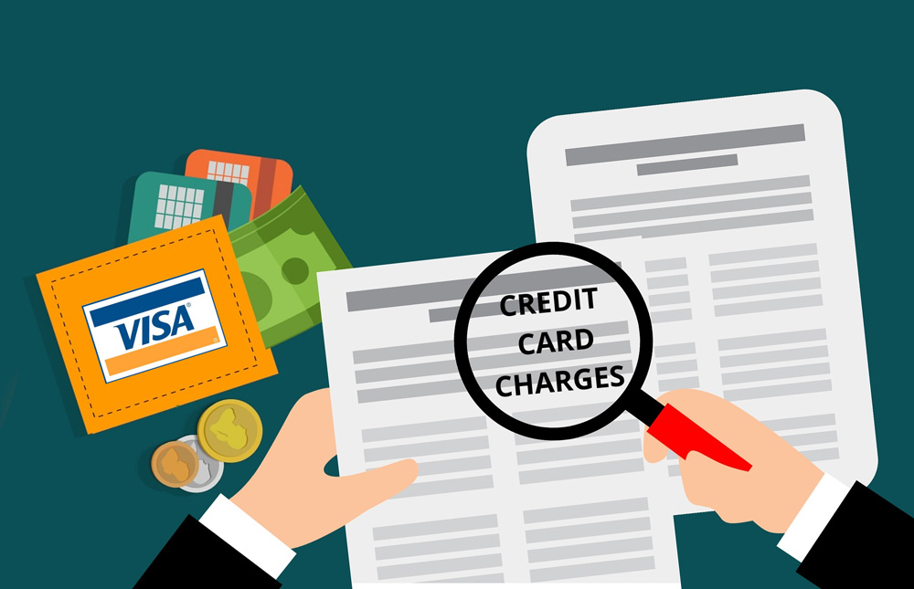 Credit card: Hidden charges you must know about visa moneyback 30stades