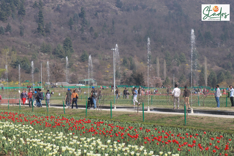 Lakhs of visitors come to see the garden every spring, which lasts from March to late April. 30 stades