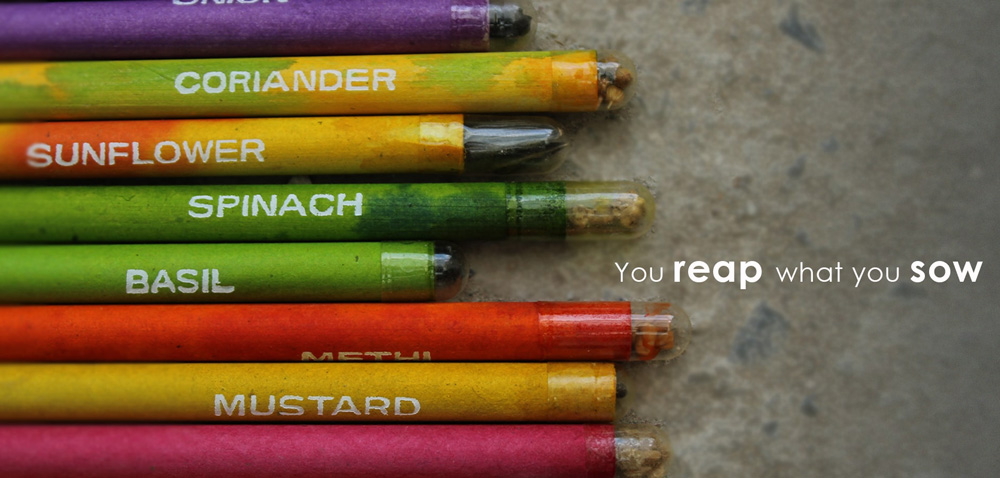 These seed pencils contain seeds and can be planted after use