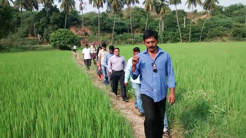 Andhra farmer gets triple the market rates for mango & paddy with zero-cost natural farming not same as organic farming chittoor 30 stades