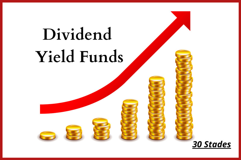 Use dividend Yield Funds to generate tax-free income mutual fund best returns on investment 30 stades