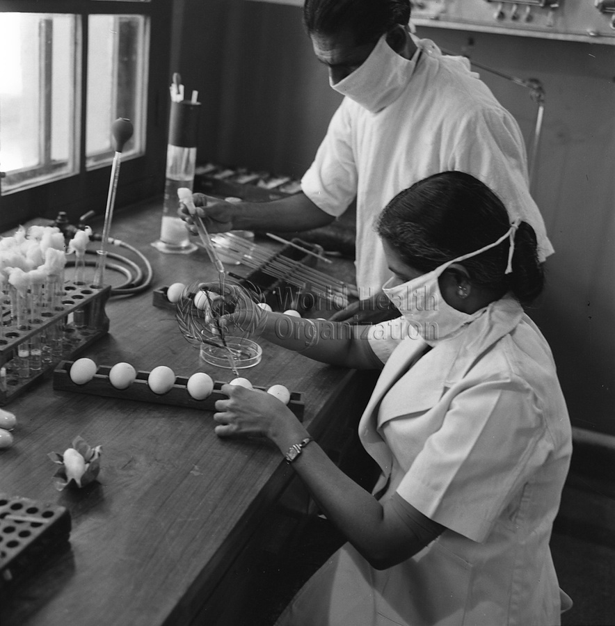 The potency of the vaccine is tested by injecting into eggs; between 1962 and 1969. Source: WHO