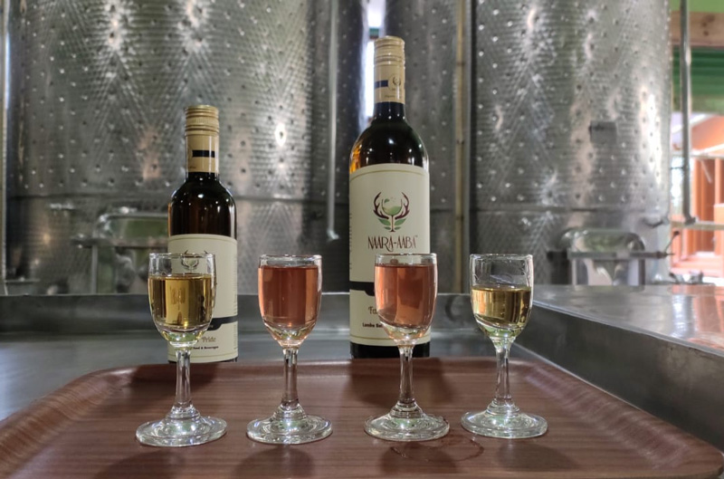 Apart from organic kiwi wine, Rita Tage also makes plum, pear, peach and wild apple wines. Pic: Naara Aaba