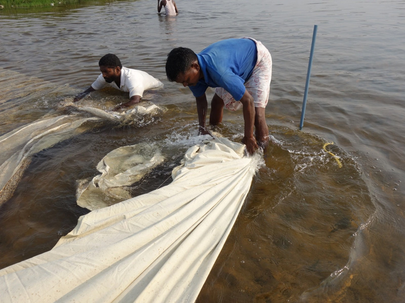 Fabric is tied with a rope while washing in the river. It is the fifth step in the seven-step process. Pic: Pitchuka Srinivasa 30 stades