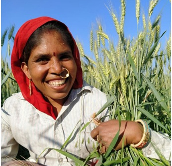 Vaagdhara has trained women in 1,000 villages of MP, Gujarat and Rajasthan in integrated farming practices. Pic: Vaagdhara 30 stades