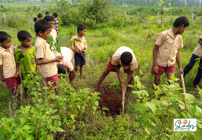 Now 130 children, including 30 orphans, are involved in the plantation drive. The orphan kids are looked after by the Sido Kanhu Mission. Pic: Partho Burman 30 stades