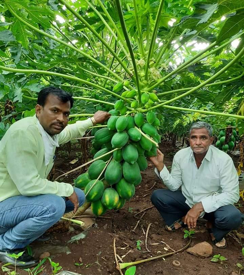 Sandeep Gitte's father, elder brother and other family members work on the farm. Pic: Facebook/@globalparli