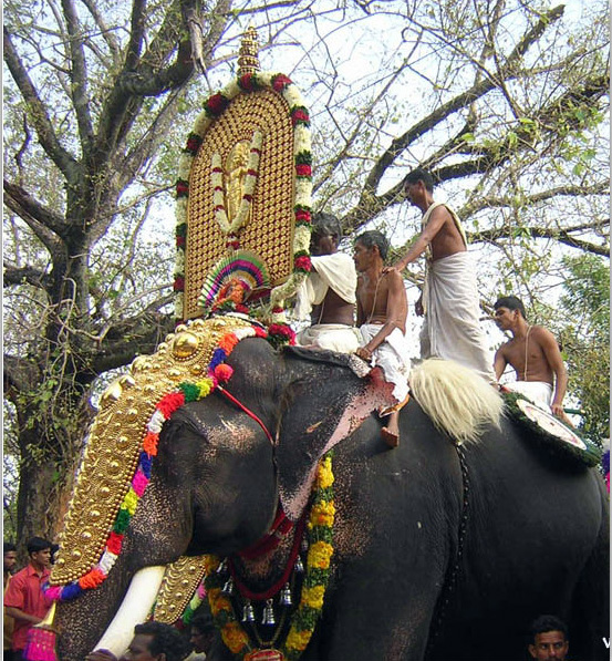 Elephant procession during Onam. Elephants from temples are decked up and taken around towns/villages. Pic: Flickr 30 stades