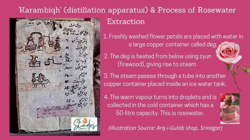 The traditional process of making rosewater explained in a handmade illustration at Arq-i-Gulab in the infographic, Srinagar, Pic: Parsa Mahjoob