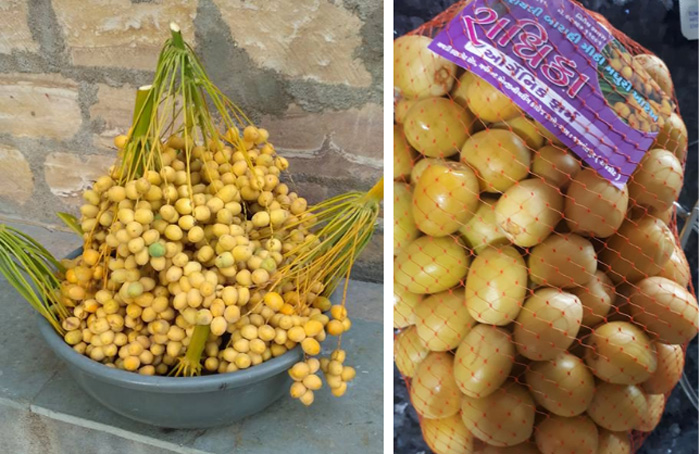 The produce is sold from the farm itself. Pic: Radhika Organic Farm 30stades